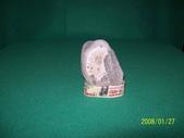 石頭的家  猴子篇:1202918200.jpg