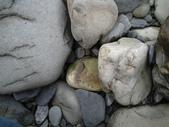 石頭的家  猴子篇:1202918208.jpg