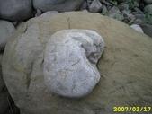 石頭的家  猴子篇:1202918209.jpg