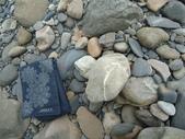 石頭的家  貓咪 鳥兒 :DSC07265.JPG