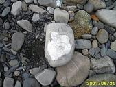 石頭的家  貓咪 鳥兒 :IMG_5416.JPG