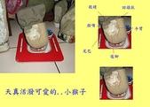 動物 猴子:DSC02370-1.JPG