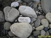 石頭的家  貓咪 鳥兒 :IMG_2098.JPG