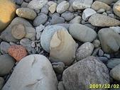 石頭的家  貓咪 鳥兒 :IMG_2461.JPG