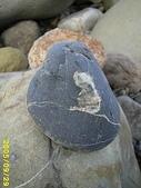 石頭的家  人物篇:IMG_0165.JPG